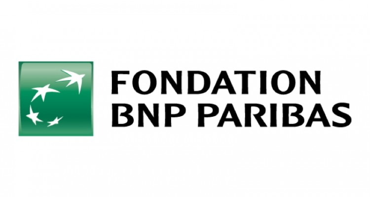 fondation-bnp-paribas-pubdigitale